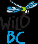 wild_bc